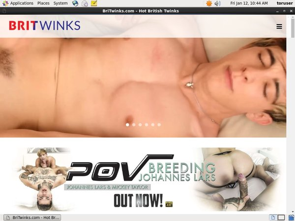 Download BriTwinks