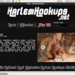 Harlem Hookups Discount 50%